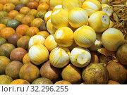 Купить «Orange fruits for sale at street market, Zanzibar, Africa», фото № 32296255, снято 7 октября 2019 г. (c) Знаменский Олег / Фотобанк Лори