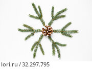 Купить «christmas ornament of fir branches and pine cone», фото № 32297795, снято 26 сентября 2018 г. (c) Syda Productions / Фотобанк Лори