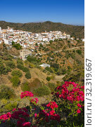White village of Moclinejo, Axarquia mountains. Malaga province. Southern Andalusia, Spain. Europe. Стоковое фото, фотограф Jerónimo Alba / age Fotostock / Фотобанк Лори