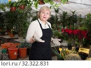 Купить «Woman gardener is standing near plants», фото № 32322831, снято 23 февраля 2018 г. (c) Яков Филимонов / Фотобанк Лори