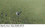 Купить «Low orbital flight around man on green grass with notebook pad at yellow rural field.», видеоролик № 32339911, снято 15 марта 2019 г. (c) Александр Маркин / Фотобанк Лори