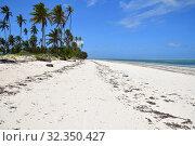 Купить «Zanzibar scenery, Tanzania, Africa», фото № 32350427, снято 6 октября 2019 г. (c) Знаменский Олег / Фотобанк Лори