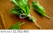 Bunch of organic fresh green sorrel, on a table. Стоковое видео, видеограф Peredniankina / Фотобанк Лори