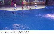 Купить «Presentation (Show) VDNKh Moskvarium - the biggest in Europe sea aquarium and entertainment center, Moscow, Russia», видеоролик № 32352447, снято 31 октября 2019 г. (c) Владимир Журавлев / Фотобанк Лори