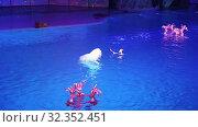 Купить «Presentation (Show) VDNKh Moskvarium - the biggest in Europe sea aquarium and entertainment center, Moscow, Russia», видеоролик № 32352451, снято 31 октября 2019 г. (c) Владимир Журавлев / Фотобанк Лори