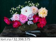 Купить «Bunch of colorful roses in vase and pruner», фото № 32398575, снято 6 июня 2019 г. (c) Короленко Елена / Фотобанк Лори