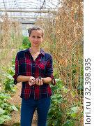 Купить «Woman farmer fastening cucumber on supporting netting», фото № 32398935, снято 29 февраля 2020 г. (c) Яков Филимонов / Фотобанк Лори