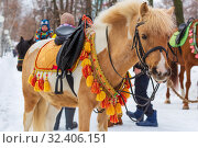 Купить «Russia, Samara, March 2019: Shrovetide. Walking horse in a beautiful harness.», фото № 32406151, снято 10 марта 2019 г. (c) Акиньшин Владимир / Фотобанк Лори