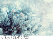Купить «Зимний пейзаж. Ветки голубой ели и падающий снег. Winter snowy background with fir tree branches. Blue pine tree branches under winter falling snow,winter forest nature», фото № 32410723, снято 6 марта 2019 г. (c) Зезелина Марина / Фотобанк Лори