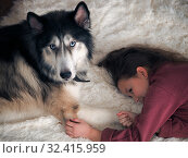 Купить «A child lies on the carpet with a huge dog. The concept of friendship, trust and affection for the dog», фото № 32415959, снято 14 ноября 2019 г. (c) Ирина Козорог / Фотобанк Лори