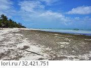 Купить «Paje, Zanzibar island, Tanzania, Africa», фото № 32421751, снято 6 октября 2019 г. (c) Знаменский Олег / Фотобанк Лори
