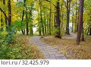 Купить «Осень в парке Царицыно в Москве, Россия», фото № 32425979, снято 12 октября 2018 г. (c) Елена Коромыслова / Фотобанк Лори