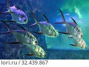 Стая серебряных рыбок в морском аквариуме. Стоковое фото, фотограф Татьяна Белова / Фотобанк Лори