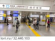 Passengers go to south transfer platform for bullet train departure. Tokaido, Sanyo Shinkansens tracks with gates numbers. It is on Tokyo railway station (2013 год). Редакционное фото, фотограф Кекяляйнен Андрей / Фотобанк Лори