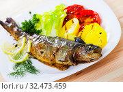 Купить «Baked trout with vegetables», фото № 32473459, снято 12 декабря 2019 г. (c) Яков Филимонов / Фотобанк Лори