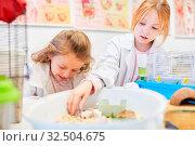 Kinder versorgen kleine Mäuse im Biologie Unterricht der Grundschule. Стоковое фото, фотограф Zoonar.com/Robert Kneschke / age Fotostock / Фотобанк Лори