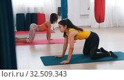 Купить «Yoga in the studio - two women performing exercises for the loin - bending the waist», видеоролик № 32509343, снято 27 мая 2020 г. (c) Константин Шишкин / Фотобанк Лори