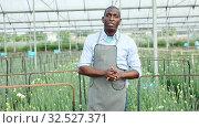 Купить «Portrait of young man gardener working with carnation flowers in greenhouse», видеоролик № 32527371, снято 4 декабря 2019 г. (c) Яков Филимонов / Фотобанк Лори