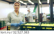 Young woman in uniform during sorting at warehouse at apples factory. Стоковое видео, видеограф Яков Филимонов / Фотобанк Лори
