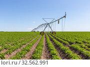 Купить «Crop Irrigation center pivot sprinkler system», фото № 32562991, снято 5 июня 2019 г. (c) Ольга Сейфутдинова / Фотобанк Лори