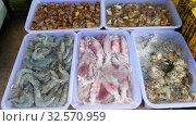 Купить «Thailand fresh seafood on street market», видеоролик № 32570959, снято 23 ноября 2019 г. (c) Игорь Жоров / Фотобанк Лори