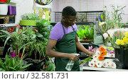 Купить «Smiling African American man professional florist offering fresh gerberas at his flower shop», видеоролик № 32581731, снято 26 марта 2019 г. (c) Яков Филимонов / Фотобанк Лори