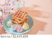Купить «Sweet delicious dessert, homemade baked goods for breakfast. Belgian soft waffles on a blue plate with fresh milk and meringues on a peach-colored background in pastel tone», фото № 32615659, снято 30 ноября 2019 г. (c) Светлана Евграфова / Фотобанк Лори