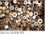 Купить «Buttons on needlework store shelves in Barcelona», фото № 32616107, снято 18 октября 2019 г. (c) Яков Филимонов / Фотобанк Лори