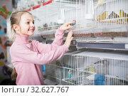 Купить «Girl visitor admiring finches, parrots and canaries», фото № 32627767, снято 19 января 2017 г. (c) Яков Филимонов / Фотобанк Лори