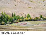 Cattle farm in a wooded ravine between the hills in the Chui Valley. Russia, mountain Altai. Стоковое фото, фотограф Вадим Орлов / Фотобанк Лори