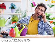 Купить «Gardener florist working in a flower shop with house plants», фото № 32658875, снято 30 мая 2017 г. (c) Elnur / Фотобанк Лори