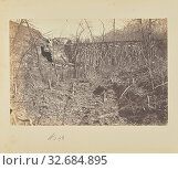 Купить «Trestle Bridge across Bull Run, A.J. Russell (American, 1830 - 1902), Centreville, Virginia, United States, April 1863, Salted paper print, 13.7 × 20.1 cm (5 3/8 × 7 7/8 in.)», фото № 32684895, снято 17 июня 2019 г. (c) age Fotostock / Фотобанк Лори