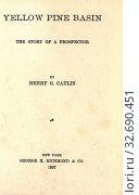 Купить «Yellow Pine Basin : the story of a prospector : Catlin, Henry G.», фото № 32690451, снято 12 июля 2020 г. (c) age Fotostock / Фотобанк Лори