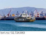 Купить «A swimming ferryboat on a overcast day», фото № 32724843, снято 8 декабря 2019 г. (c) Татьяна Ляпи / Фотобанк Лори