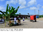 Купить «Cuba, Iznaga - Valley of the sugar factories», фото № 32753651, снято 27 июля 2019 г. (c) Caro Photoagency / Фотобанк Лори