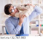 Купить «Funny crazy professor studying dinosaur skeleton», фото № 32787983, снято 7 марта 2018 г. (c) Elnur / Фотобанк Лори