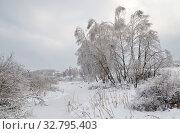 Купить «Зимний пейзаж с заснеженными деревьями на берегу реки Учи», фото № 32795403, снято 15 ноября 2016 г. (c) Елена Коромыслова / Фотобанк Лори