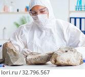 Купить «Scientist looking and stone samples in lab», фото № 32796567, снято 4 декабря 2017 г. (c) Elnur / Фотобанк Лори