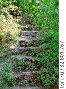 Купить «Alte treppe, treppe, stufe, stufen, treppenstufe, treppenstufen, malerisch, draußen, natur», фото № 32801767, снято 1 июня 2020 г. (c) easy Fotostock / Фотобанк Лори