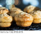 Купить «salted muffins with cream cheese, topping parmesan», фото № 32910615, снято 14 октября 2019 г. (c) Ольга Сергеева / Фотобанк Лори