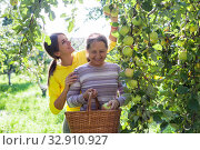 Купить «elderly woman with adult daughter in apple orchard.», фото № 32910927, снято 27 мая 2020 г. (c) Дарья Филимонова / Фотобанк Лори