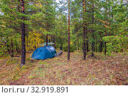 Купить «A blue tourist tent stands in an autumn forest on a rainy day.», фото № 32919891, снято 19 сентября 2019 г. (c) Акиньшин Владимир / Фотобанк Лори
