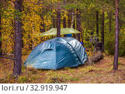 Купить «A blue tourist tent stands in an autumn forest on a rainy day.», фото № 32919947, снято 19 сентября 2019 г. (c) Акиньшин Владимир / Фотобанк Лори