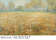 Meadow in Bloom, A flowering meadow, bordered in the distance by a row of birches., Egbert Rubertus Derk Schaap, 1913, canvas, oil paint (paint), h 59.7 cm × w 93.6 cm × t 2.6 cm d 10.5 cm. Редакционное фото, фотограф ARTOKOLORO QUINT LOX LIMITED / age Fotostock / Фотобанк Лори
