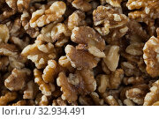 Купить «Dried kernels of walnuts», фото № 32934491, снято 20 января 2020 г. (c) Яков Филимонов / Фотобанк Лори