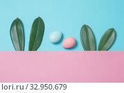 Купить «Bunny rabbit ears made of green leaves and painted eggs on pastel background. Happy Easter concept», фото № 32950679, снято 16 января 2020 г. (c) Майя Крученкова / Фотобанк Лори
