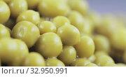 Green peas in bulk. Стоковое видео, видеограф Потийко Сергей / Фотобанк Лори