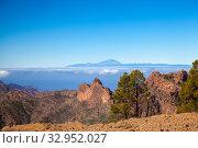 Купить «Пейзажи острова Гран Канария», фото № 32952027, снято 11 января 2020 г. (c) Tamara Kulikova / Фотобанк Лори