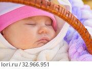 Купить «Close-up of the face of a toddler sleeping in a basket on a walk», фото № 32966951, снято 12 ноября 2019 г. (c) Иванов Алексей / Фотобанк Лори