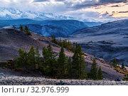 Evening in the Kurai steppe, the North Chuysky ridge on the horizon. Altai Republic, Russia. Стоковое фото, фотограф Вадим Орлов / Фотобанк Лори